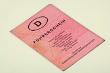Führerschein übersetzt und beglaubigt