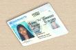 US-Führerschein übersetzt und beglaubigt