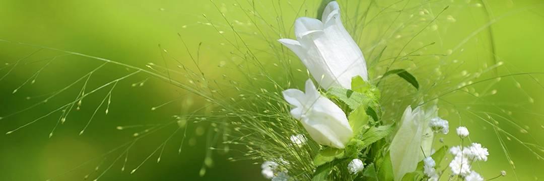 Weißer Blumenstrauß mit Gräsern, Glockenblumen und Schleierkraut